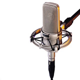 Audio-Technica AT4047SVSC Cardioid Condenser Microphone
